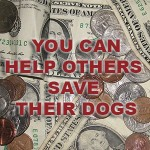 Help others with their vet bills